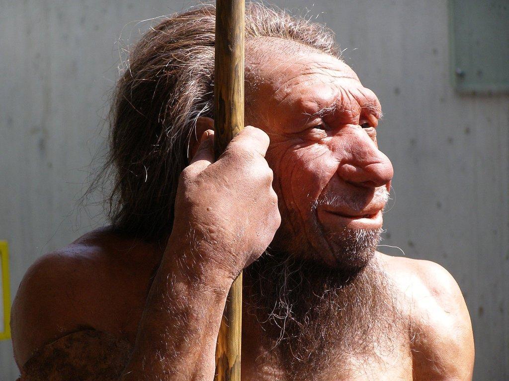 Et si nous étions plus bêtes que nos ancêtres
