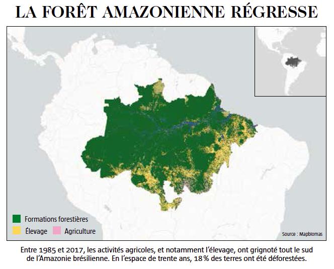 la forêt amazonienne régresse